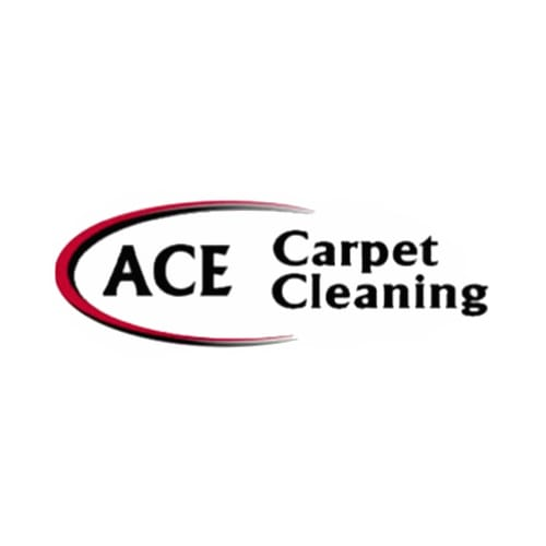 20 Best Tucson Carpet Cleaners Expertise