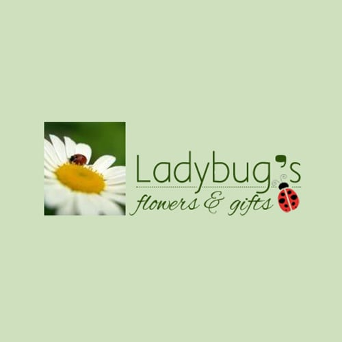 Ladybug's Flowers and Gifts