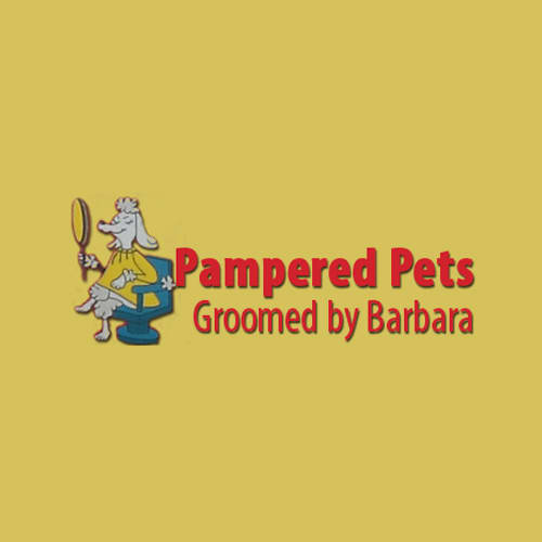 18 best virginia beach dog groomers expertise solutioingenieria Gallery