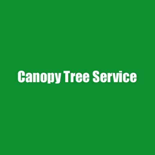 Here are the Picks  sc 1 st  Expertise & 13 Best Winston Salem Tree Service Professionals | Expertise