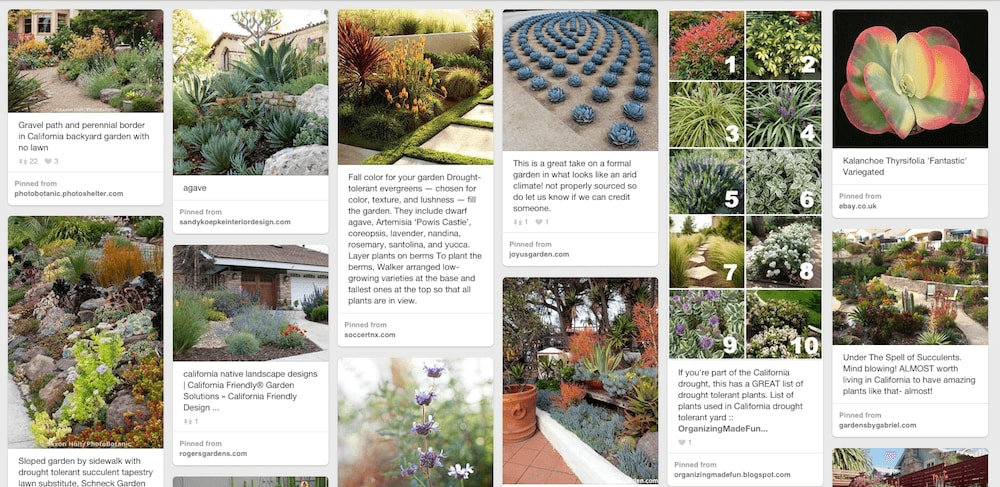 Xeriscaping Pinterest
