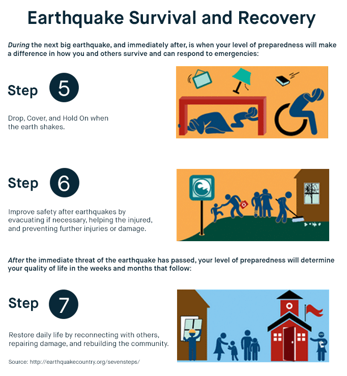 Earthquake Survival and Recovery