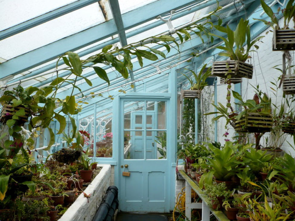 A brief history of greenhouses